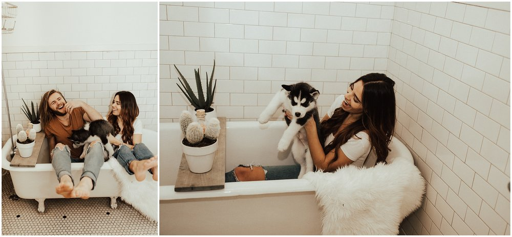 Intimate In Home Session | Siberian Husky Puppy | Cassie Trottier Photography | Liz Vaugin