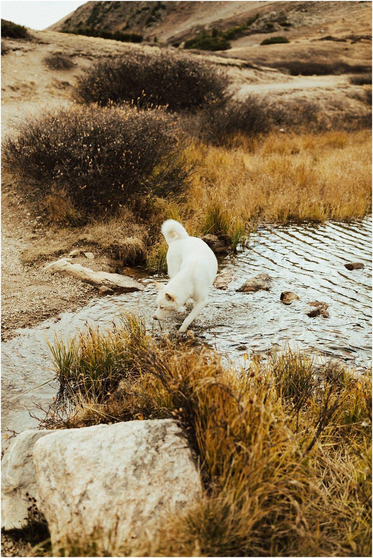 Loveland Pass Cassie Trottier Photography_1001.jpg