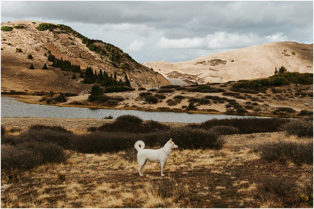 Loveland Pass Cassie Trottier Photography_1095.jpg