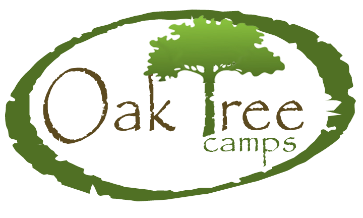 Oak Tree Camps | Atlanta Summer Camp at Emory University