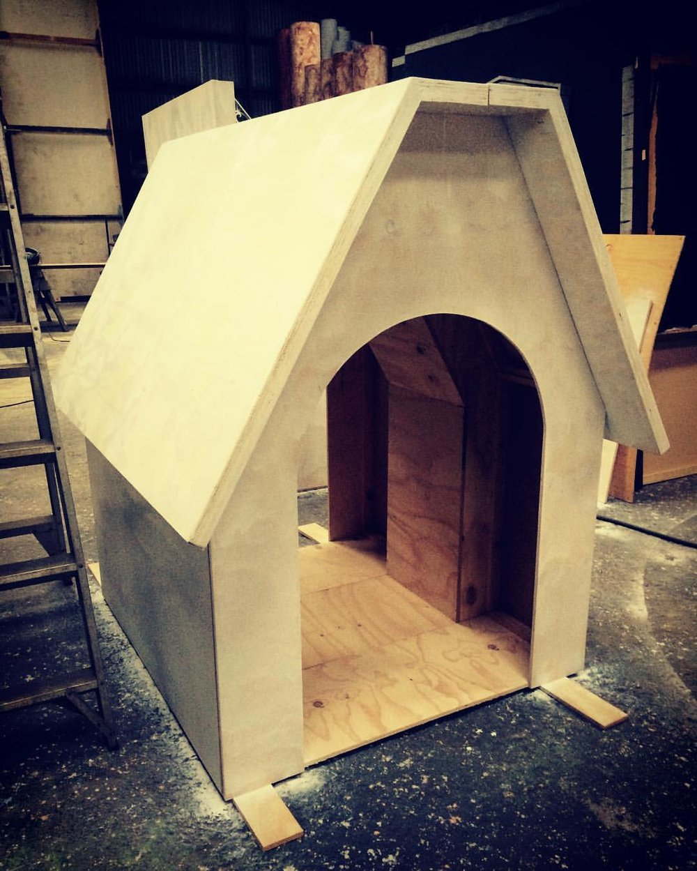 Charlie Brown - Dog House.jpg
