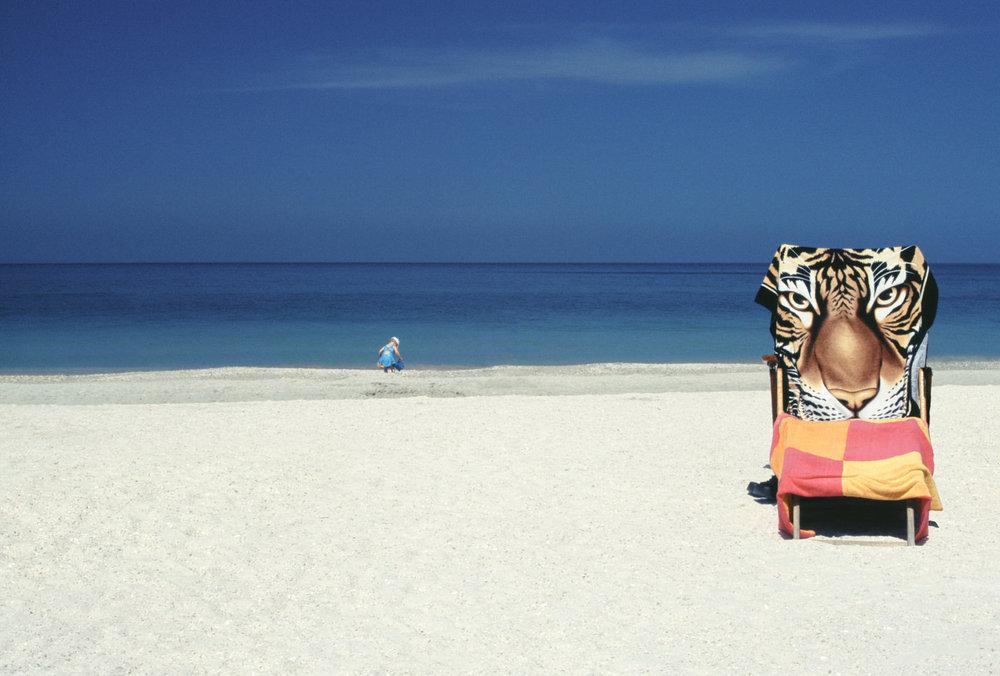 Naples, Florida.jpg