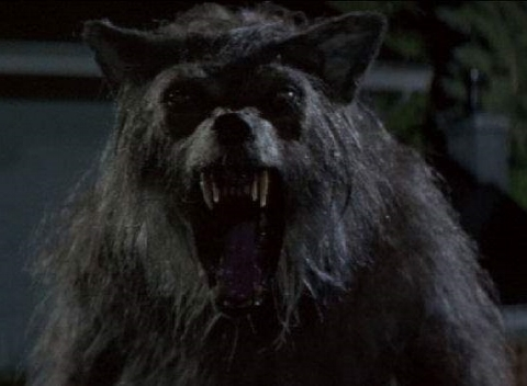 - It's Schlocktoberfest all month long here at Hex Rated Boo!vies and we're starting it off with a compact gem of a werewolf movie, Bad Moon (1996). Get ready for some cephalic carnage, hot uncles, and the Lollipop-a-Dong-Ding. The sun also rises, this week on Ex Rated!
