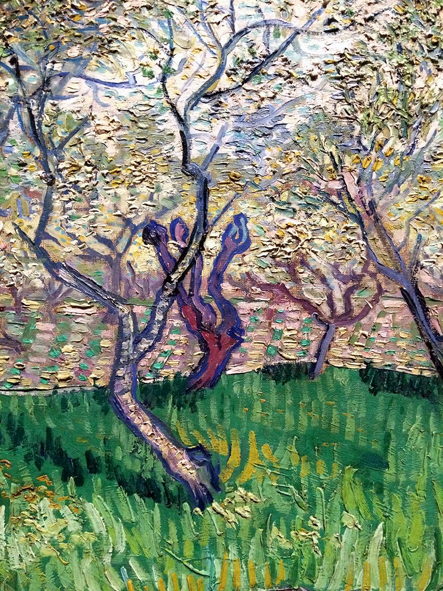 Van Gogh detail 1.JPG