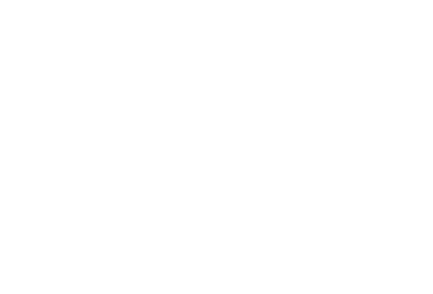 Young Musicians Workshop