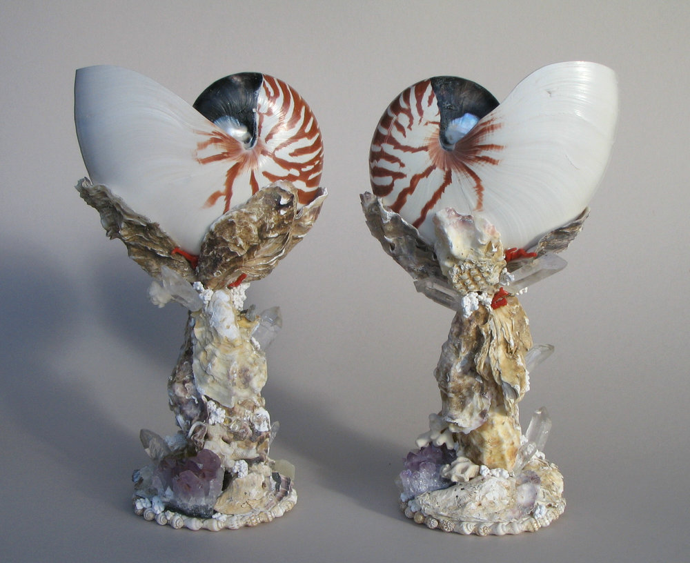 A pair of striped shell cups with red corals, quatz crystal and oyster shells. 12 ''