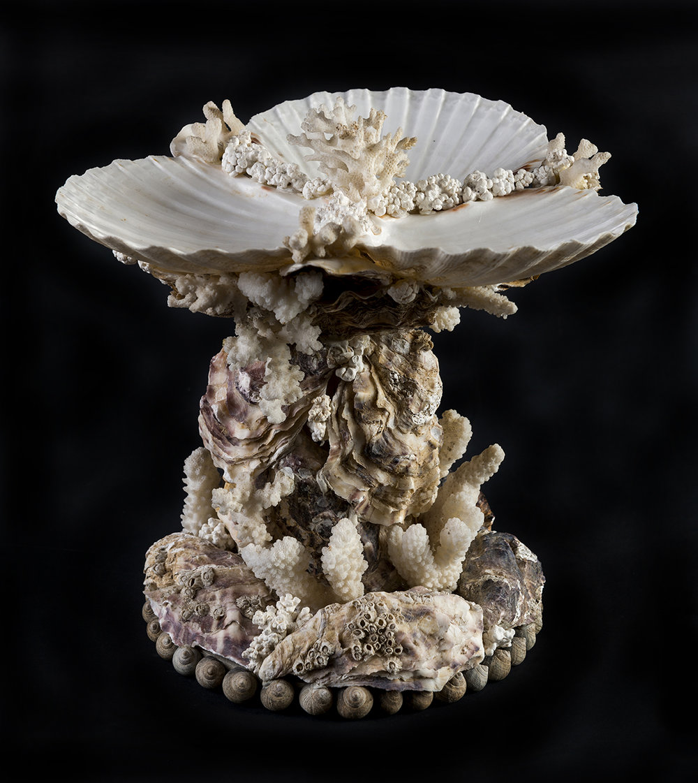 A Table Tazza   Three king scallop shells mounted on a  rocaille  stand of oysters and antique corals. 20cm x 23cm