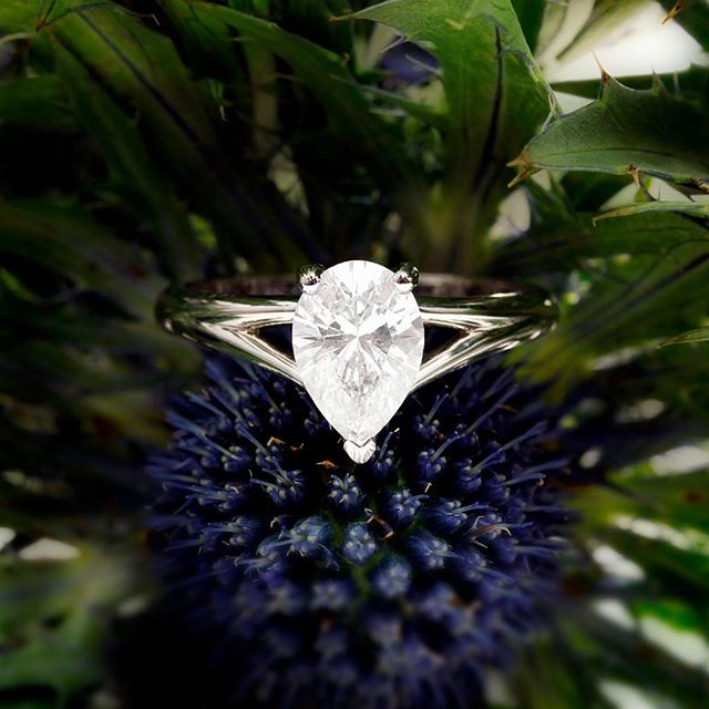 A stunning Pear Shape, Split Shank Diamond Solitaire Engagement Ring. We are a family business with skills that have been passed through the generations, we are committed to offering bespoke engagement, wedding and eternity rings and fine jewellery service, meticulously handcrafting each piece to endure a lifetime.  #jewellers #hattongarden #london #wedding #weddinginspiration #weddingrings #engagementrings #weddingbands #photooftheday #love #eternityring #eternityring #handcrafted #fashion