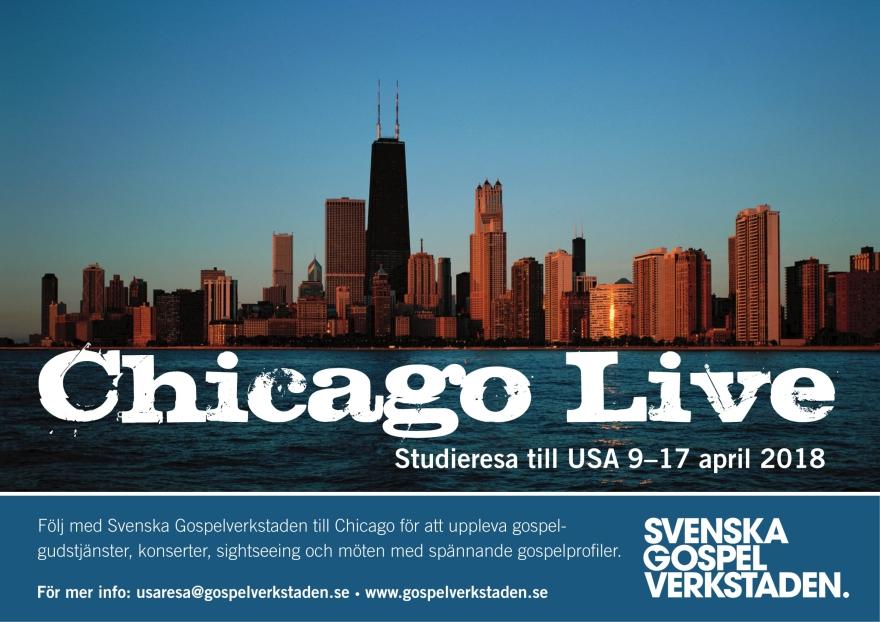 Chicago Live.jpg