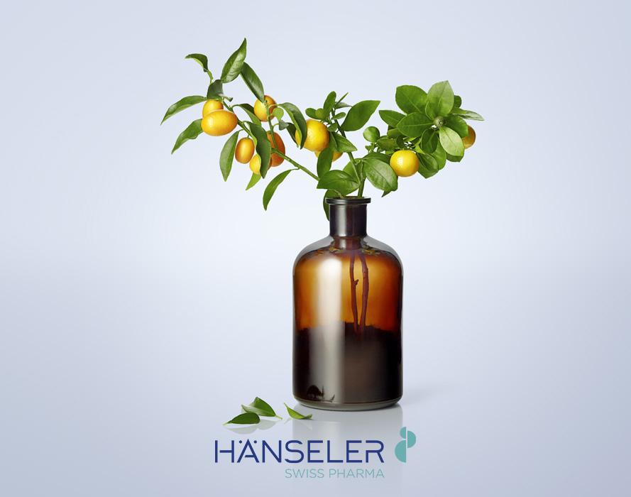 Haenseler_Orangenbaum w logo.jpg