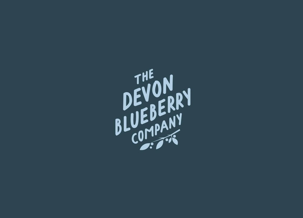 07-becca-allen-devon-blueberry-co.jpeg
