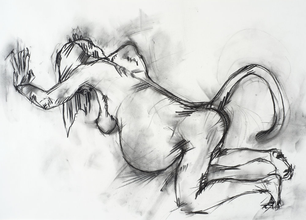 charcoal on paper  68.5 x 48.8cm