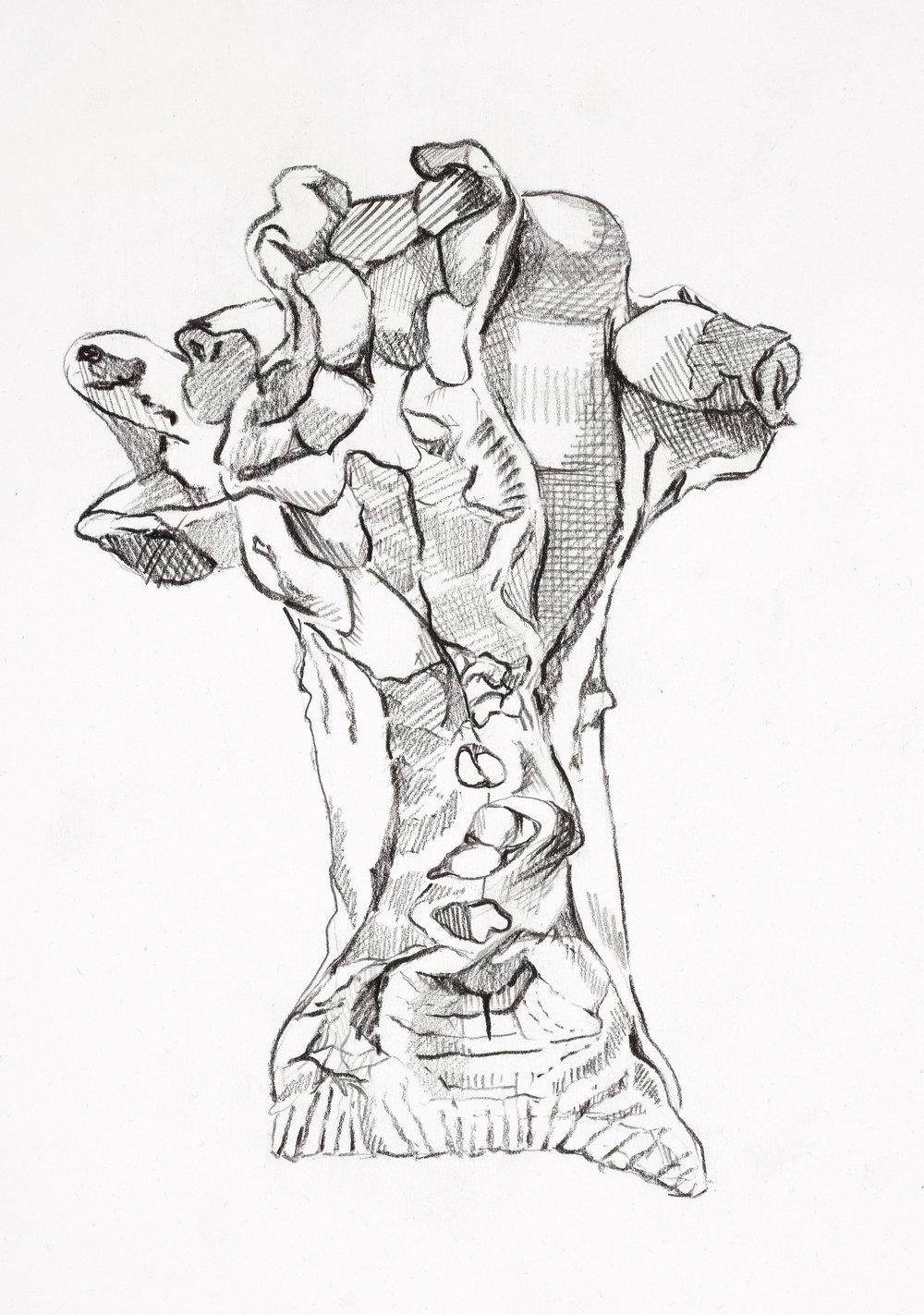graphite on paper  A4