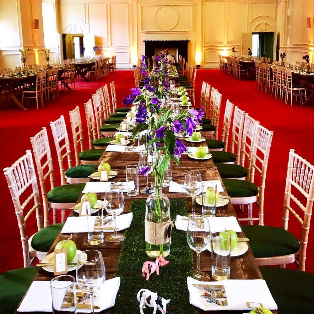 Long table dinner.JPG