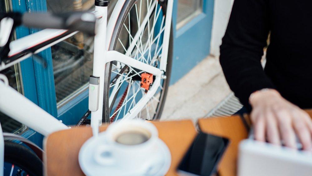 insect-FahrradJaeger-3.jpg