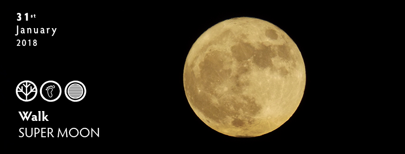 SUPERMOON-FB-COVER.png