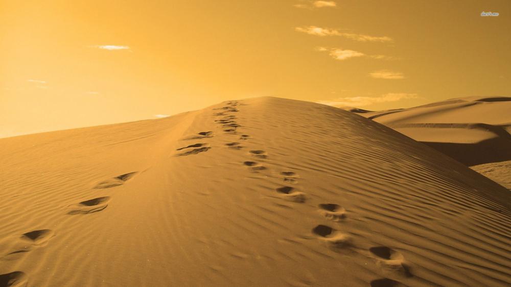 footprints in desert