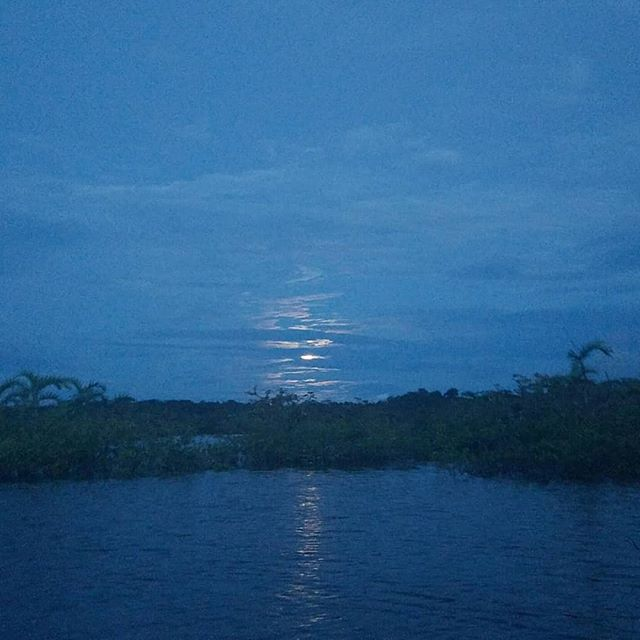 Moonrise over Laguna Grande 🌕  Cuyabeño Wildlife Preserve, Ecuador 🇪🇨 . . . .  #nofilter #nature #takemeback #amazon #amazonas #moon #laguna #rainforest #jungle #ecuador #travel #fromwhereistand #girlslovetravel #explore #exploretocreate #exploremore #nomad #digitalnomad #adventure #adventureisoutthere #lungsoftheearth #blue #lagoon #experience #justgoshoot #moonrise #moon #moonlight #magical #southamerica