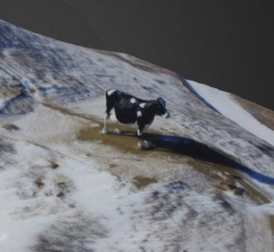Snapshot taken from an aerial 3D model of Salem Sue.