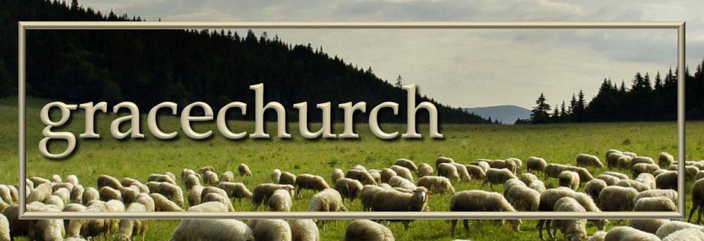 Grace Church Banner - Sheep.png