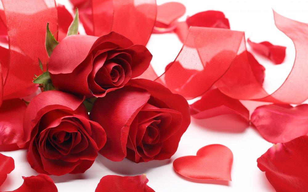 Valentine's Day Event - DETAILS TBA