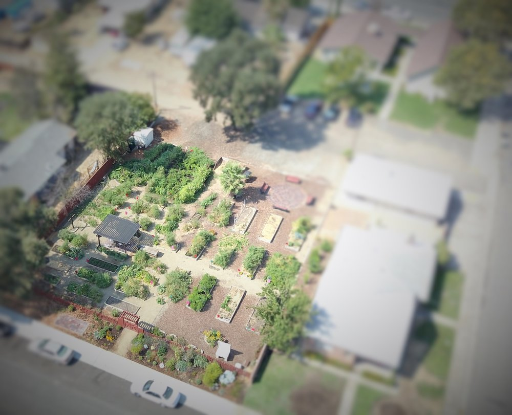 St. James Garden Aerial View.JPG
