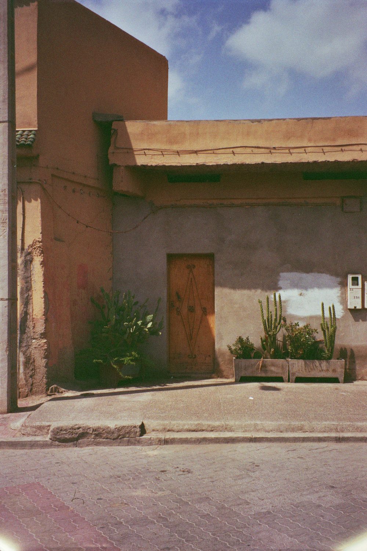 VORGARTEN / Marokko, April '18, 35 mm