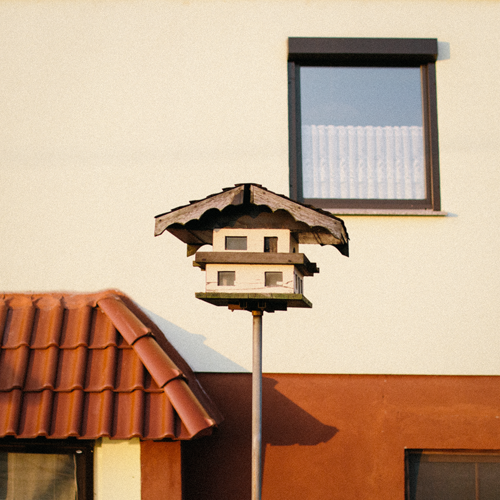 022018 02 birdhouse.png