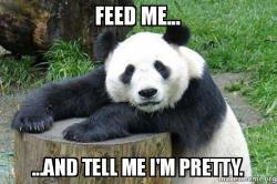 feed-me-and.jpg