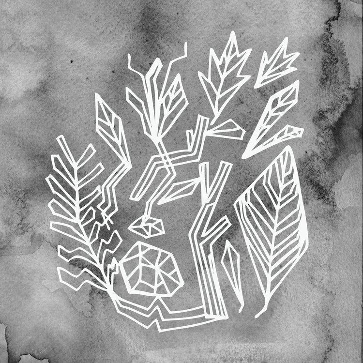 BW_plant3.jpg