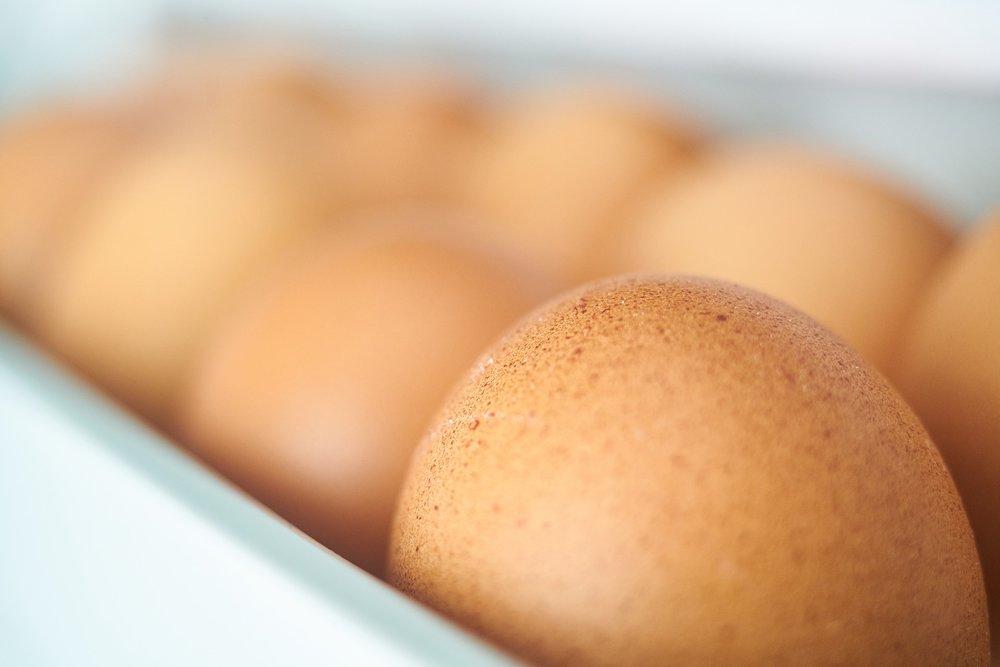 FP_Eggs.jpg