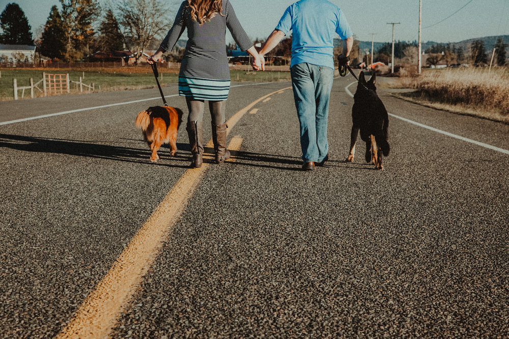 Lovely couple hold hands while they walk their dogs down the road.