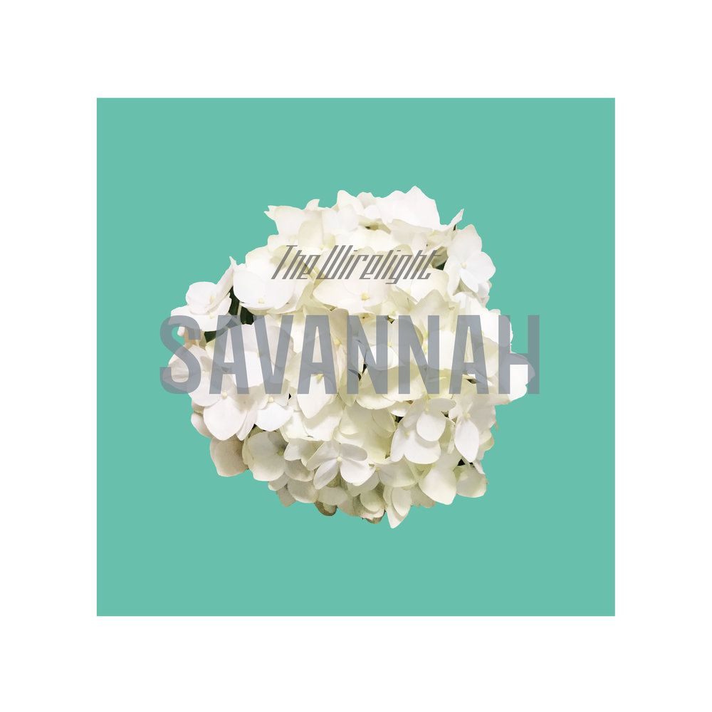 Savannah Cover.jpg