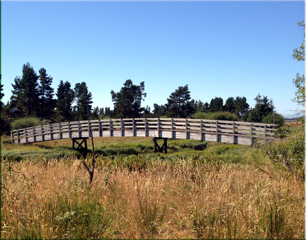 Fort Stevens Pedestrian and Biking Trail