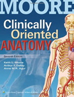 Clinically Oriented Anatomy Moore - The favoured anatomy book by many students and course organisers. Many personally liked this textbook because it has the perfect combination of description and explanation.It will briefly explain how the anatomy of a structure relates to its physiology and is therefore very useful when used in combination with your physiology text.8th edition is the latest.