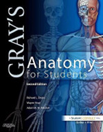 Gray's Anatomy for Students - Not to be confused with Gray's Anatomy (40th edition). This textbook is pretty good. I know of a few students who preferred it to Netters and others who absolutely despised it.