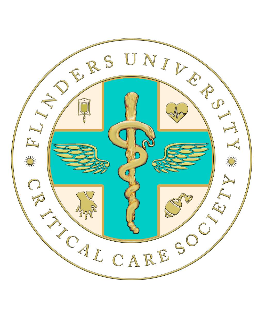 Critical Care Crest, low res.jpg