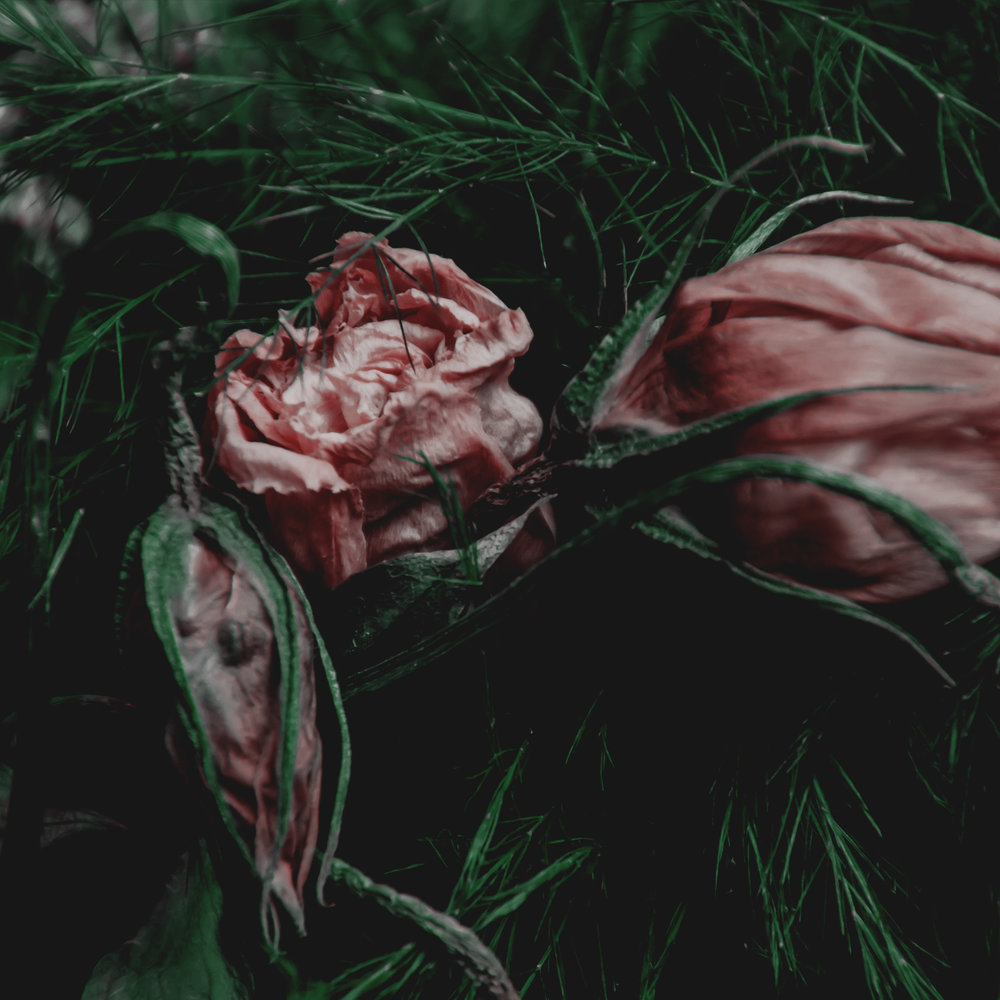 Green Red Moody Florals by KAESPO 006.jpg