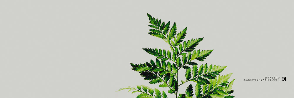 Twitter Headers - Minimal Greenery by KAESPO Design