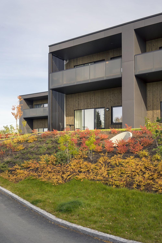 Planforum Arkitekter_Friggveien_Foto Eli Haugen Sandnes_Fasade 09.jpg