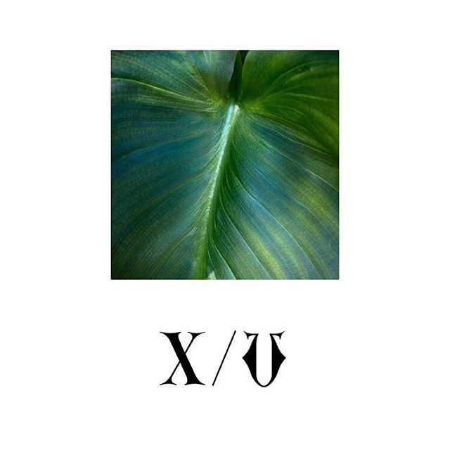 Xtra / Vrgo // #botanical #couture