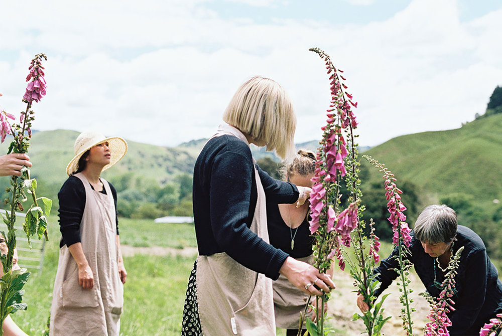 Photography by  Tess Comrie