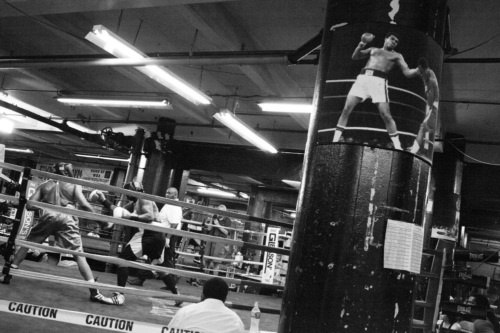 boxing_7.jpg