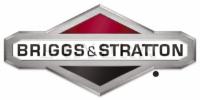 Briggs & Stratton.jpg