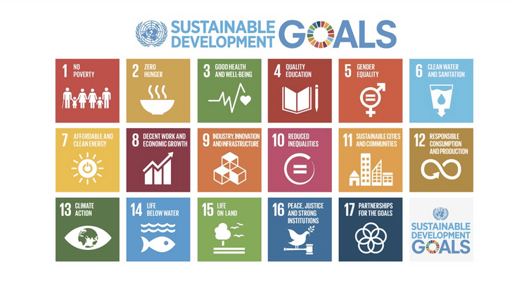 Sustainable Development Goals - We support the Sustainable Development Goals through our membership and delivery of our Three Global Goals of Education, Empowerment and Environment.