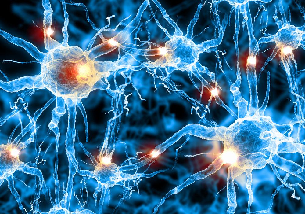 Stem Cell 2.jpg