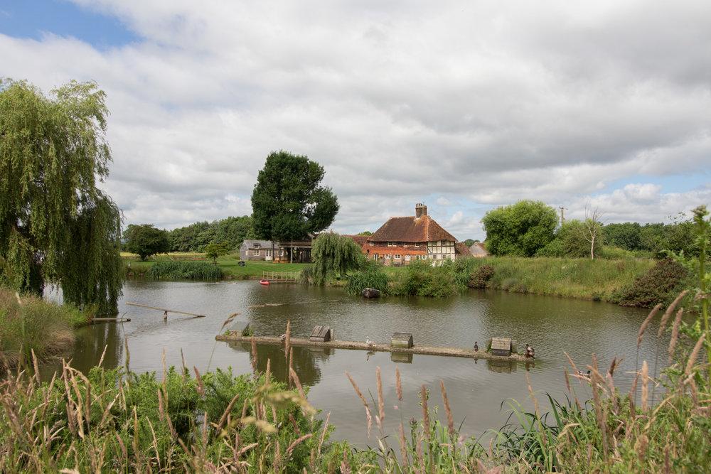 Rye Farm 1.jpg