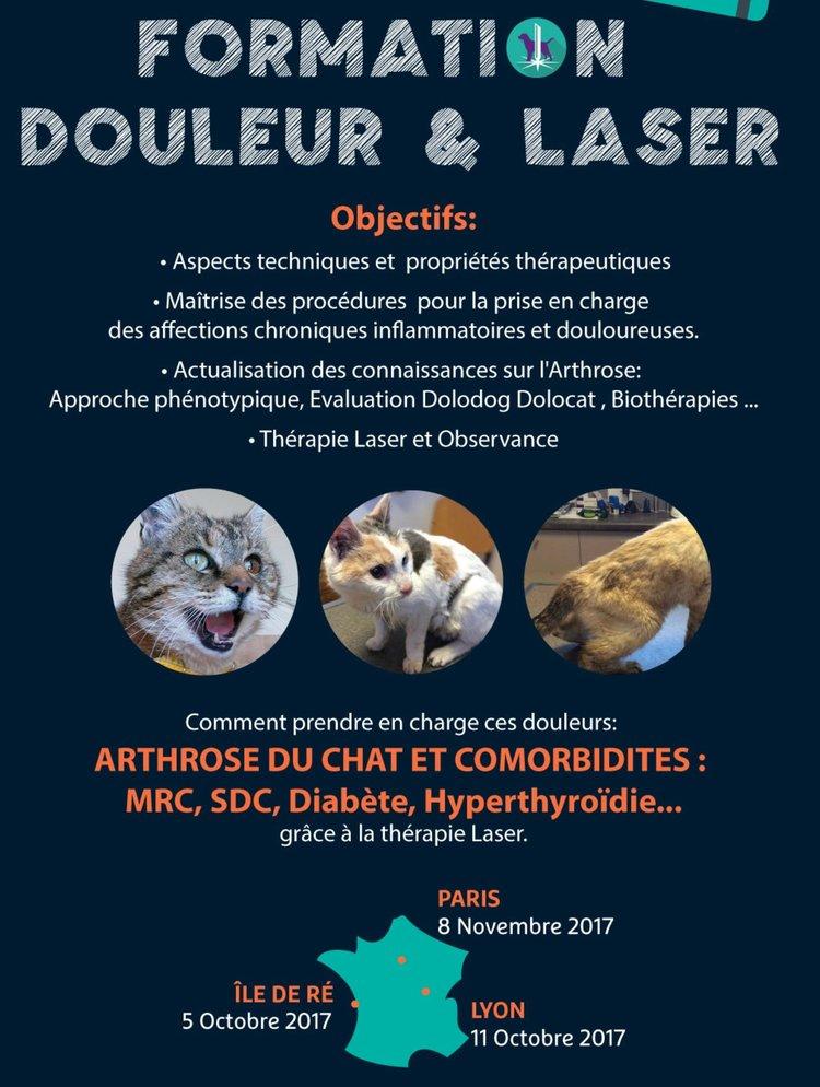 capdouleur-formation-laser.jpg