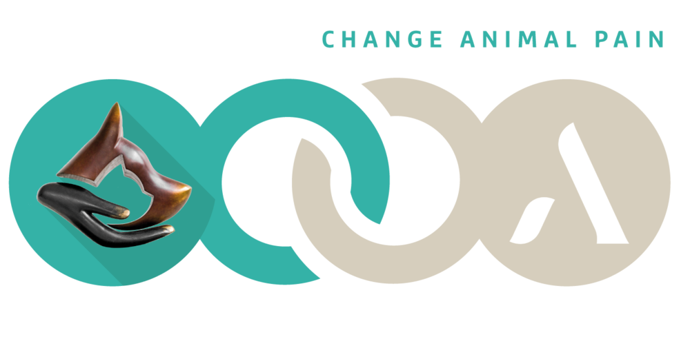 advetia-alliance-CAPdouleur.png