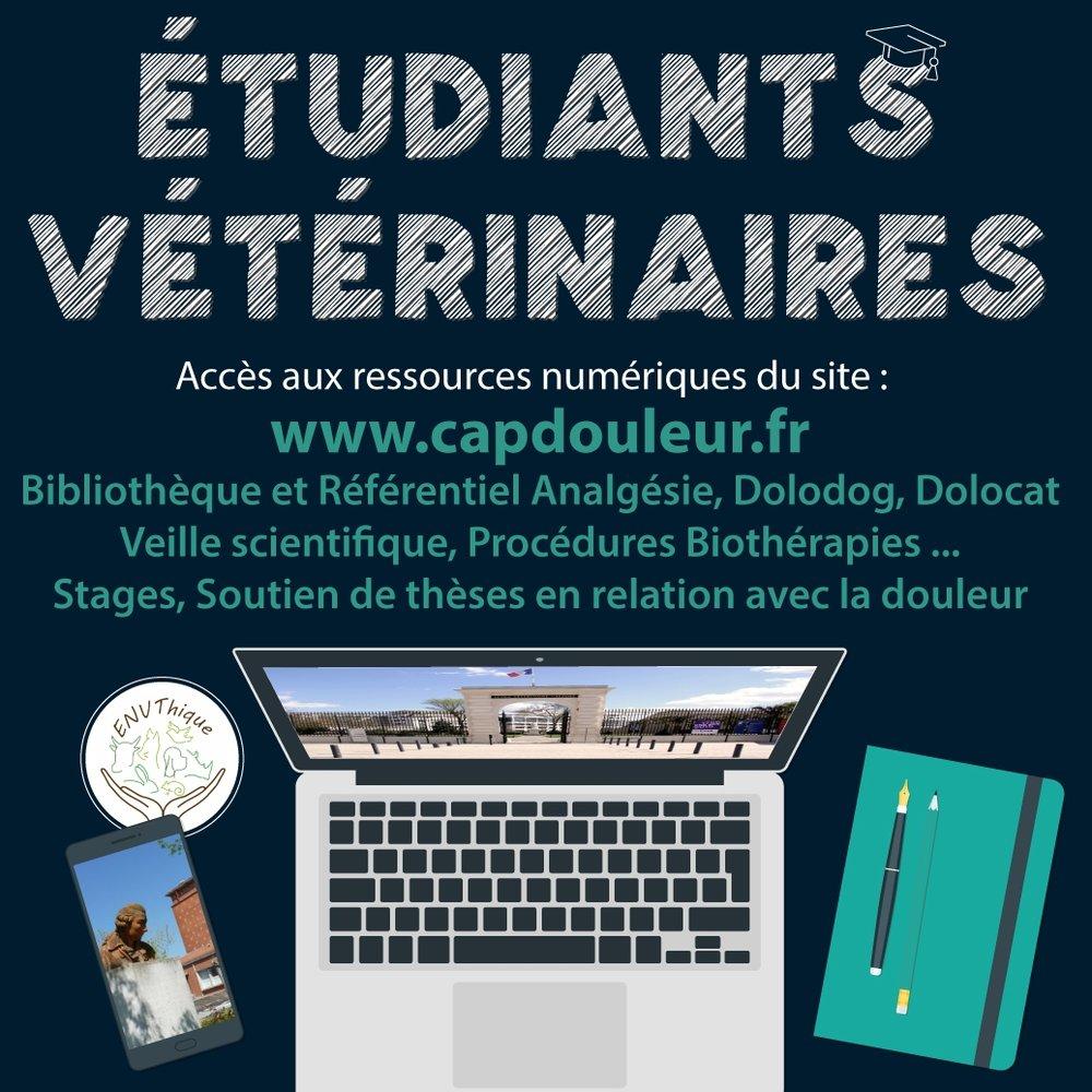 12 NOvembre 2017 - CAPdouleur Etudiants